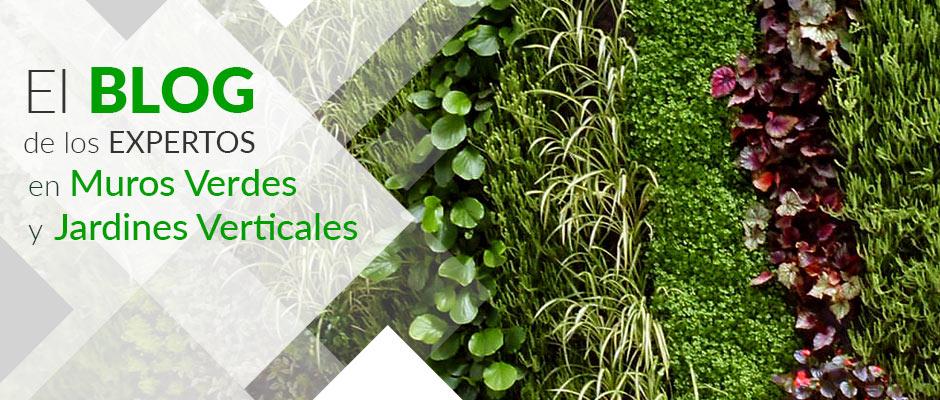 Jardiner a vertical dise o desarrollo y construcci n for Jardines verticales construccion